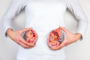 The-Hidden-Link-Between-Your-Gut-and-Your-Metabolism-1